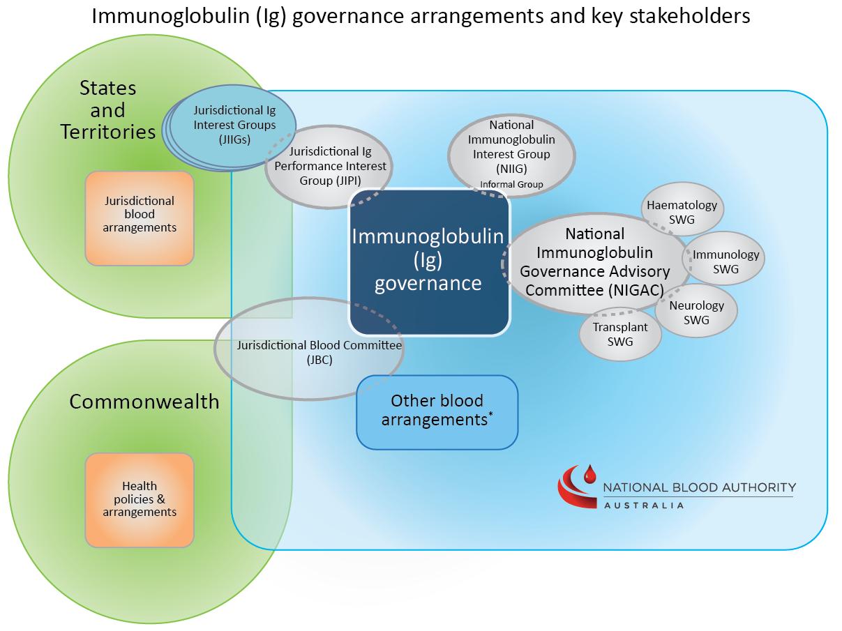 Illustrative diagram of the immunoglobulin governance arrangements and network of committees